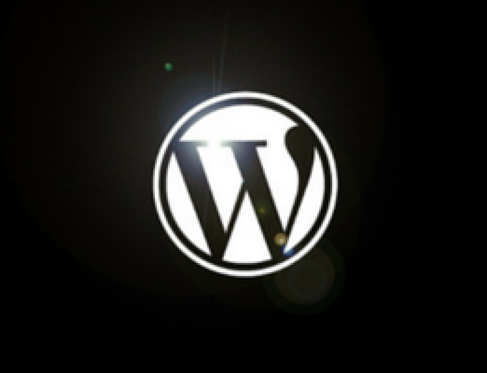 Werken met WordPress. Een aantal tips en tricks.